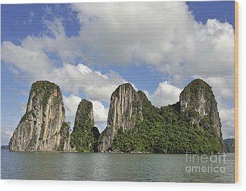 Limestone Karst Peaks Islands In Ha Long Bay Wood Print by Sami Sarkis