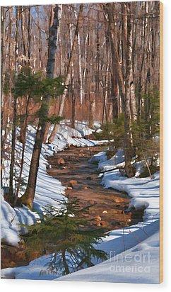 Lincoln Woods Trail Wood Print by Sharon Seaward