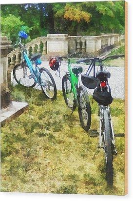Line Of Bicycles In Park Wood Print by Susan Savad