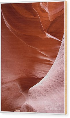 Wood Print featuring the photograph Lines And Light In The Canyon by Ruth Jolly