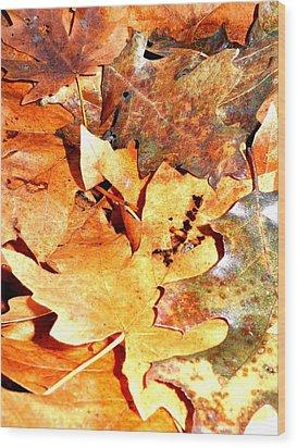 Lines Of Fall Wood Print