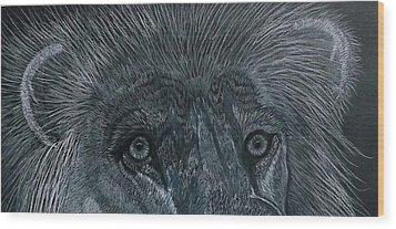 Lion Eyes  African King Detail Wood Print by Gerald Strine