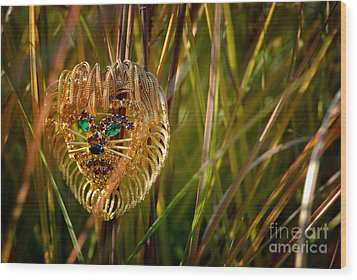 Lion In The Grass Wood Print by Amy Cicconi