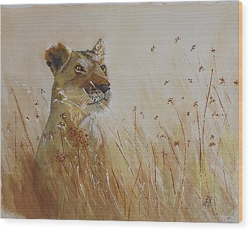 Lion In The Weeds Wood Print by Maris Sherwood