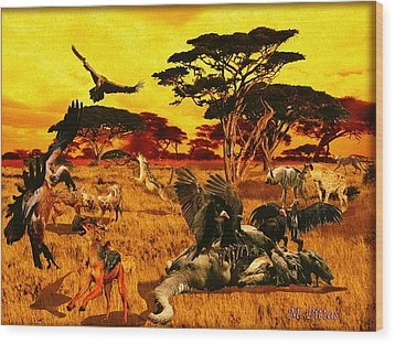 Lion Kill Morning After'98 Wood Print