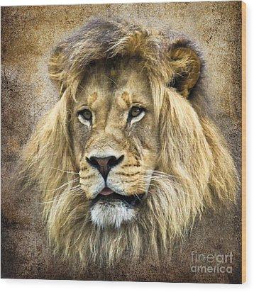 Lion King Wood Print by Steve McKinzie