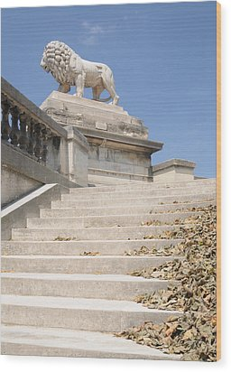 Lion Tuileries Garden Paris Wood Print