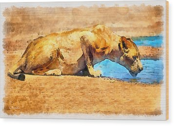 Lioness Drinking Wood Print by George Rossidis