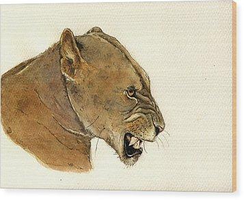 Lioness Wood Print by Juan  Bosco
