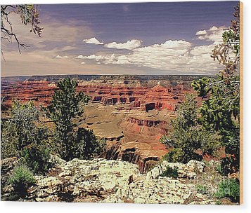 Lipan Point  Grand Canyon Wood Print by Bob and Nadine Johnston