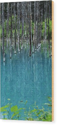 Liquid Forest Wood Print by David Hansen