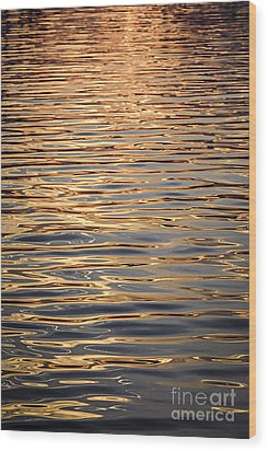 Liquid Gold Wood Print by Elena Elisseeva