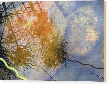 Wood Print featuring the photograph Liquid Light Stone by Allen Carroll