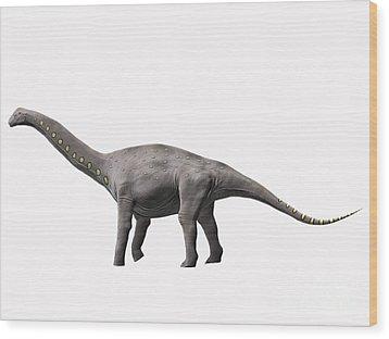 Lirainosaurus Astibae, Late Cretaceous Wood Print by Nobumichi Tamura