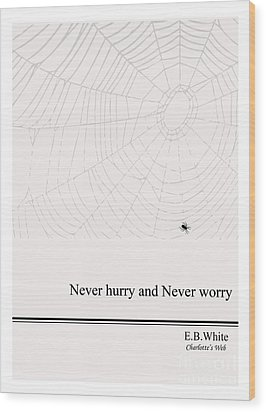 Literary Quote- E.b. White - Cw Wood Print by Trilby Cole