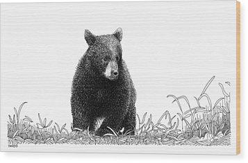 Little Bear Wood Print