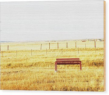 Little Bench On The Prairie Wood Print by Lenore Senior