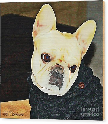 Little Black Sweater Wood Print by Barbara Chichester