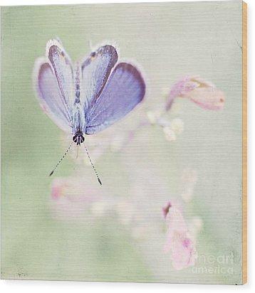 Little Blue Wood Print
