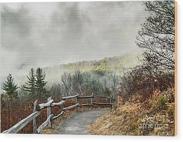 Wood Print featuring the photograph Little Cataloochee Overlook In The Great Smoky Mountains by Debbie Green
