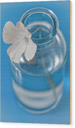 Little Flower In A Vase Wood Print by Frank Tschakert