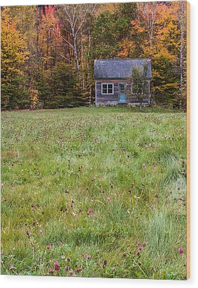 Little House At Woodlands Edge In New Hampshire Wood Print by Karen Stephenson