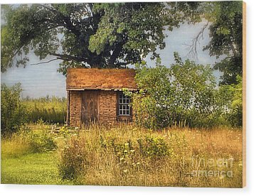 Wood Print featuring the photograph Little House On The Prairie by Peggy Franz