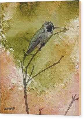 Little Hummingbird Wood Print