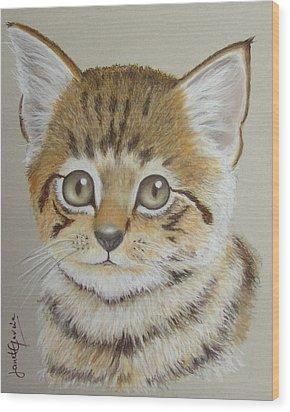 Little Kitty Wood Print by Janet Garcia