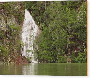 Little Laurel Branch Falls Landscape Wood Print