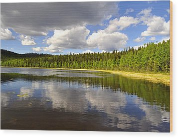 Wood Print featuring the photograph Little Lost Lake by Cathy Mahnke
