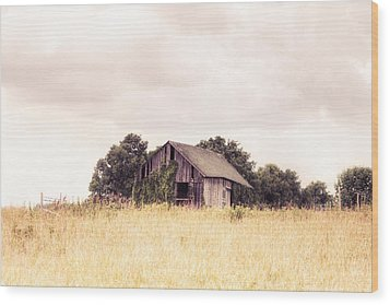 Wood Print featuring the photograph Little Old Barn In A Field - Landscape  by Gary Heller