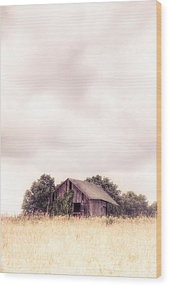 Wood Print featuring the photograph Little Old Barn In The Field - Ontario County New York State by Gary Heller