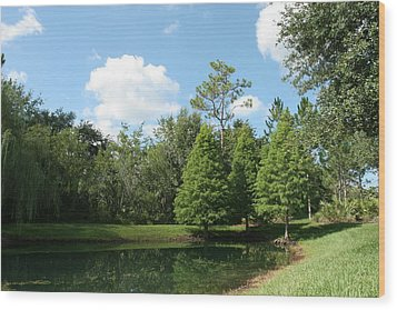Little Pond Wood Print