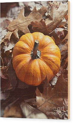 Wood Print featuring the photograph Little Pumpkin In A Bunch Of Leaves by Sandra Cunningham