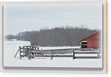Little Red Barn Wood Print by Donna Brown