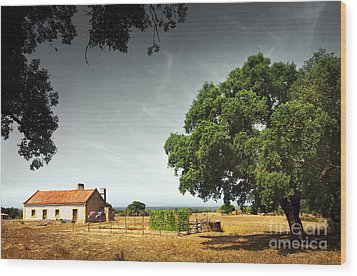 Little Rural House Wood Print by Carlos Caetano