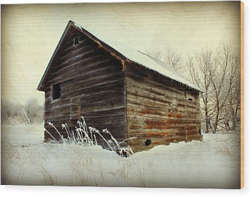 Little Shed Wood Print by Julie Hamilton