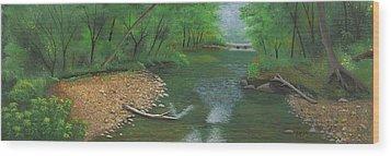 Little Shoal Creek Wood Print by Garry McMichael
