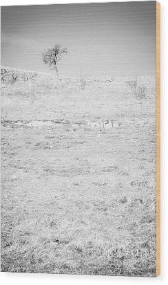 Little Tree On The Hill - Black And White Wood Print by Natalie Kinnear
