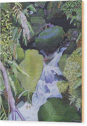 Small Waterfall Wood Print by Constance DRESCHER