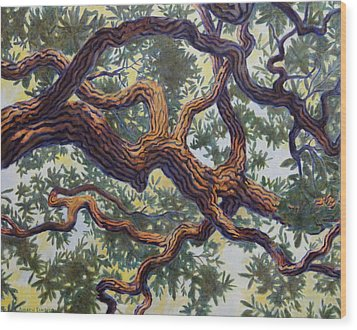 Live Oak Wood Print by Andrew Danielsen