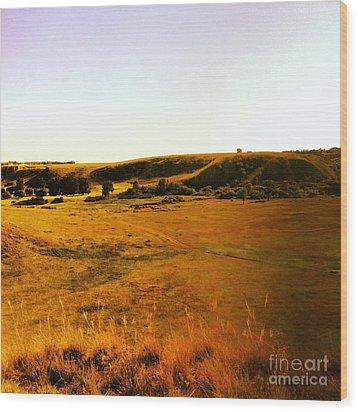 Living Land Wood Print by Kurtis McDonald