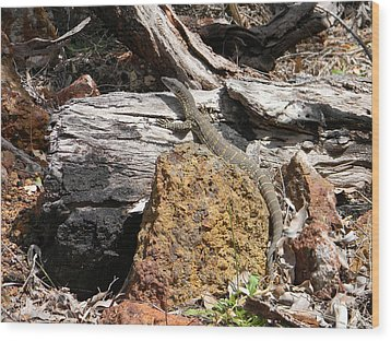 Lizard Wood Print by Adel Nemeth