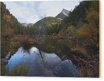 Wood Print featuring the photograph Lizard Lake by Jim Garrison