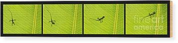 Lizards Wood Print by Tim Gainey