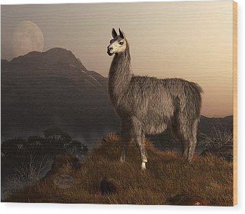Llama Dawn Wood Print by Daniel Eskridge