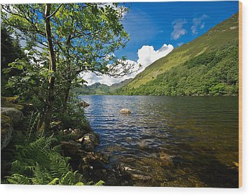 Wood Print featuring the photograph Llyn Crafnant by Stephen Taylor