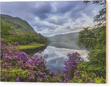 Llyn Gwynant Wood Print