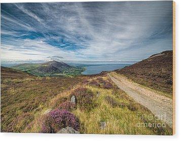 Llyn Peninsula Wood Print by Adrian Evans